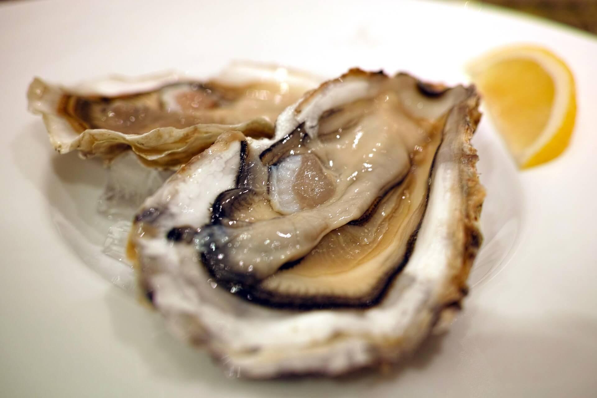 alimentos para subir la líbido ostras