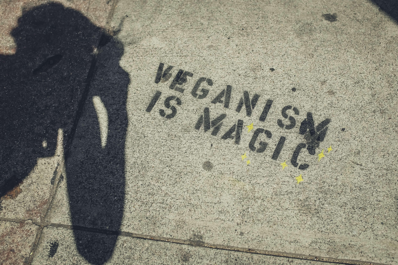 el futuro será vegano pareja vegana